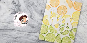 For On the CASE with Ann & Nicole (January 2019). Featuring, Hugs stamp set and die(Concord & 9th), and no-line watercoloring with Pima Classics watercolors. For more details including step-by-step instructions for CASE-ing this card , click through. #pmretreat #concordand9th #hugs #citrus #pimacraft #handstamped